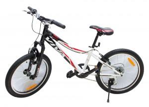 MTB 20'' Boys Bicycle (Gift1.0)