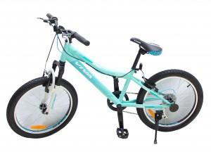 MTB 20'' Boys Bicycle (Smart)